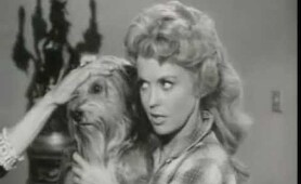 The Beverly Hillbillies - Elly's Animals, S01E19 * Classic TV comedy Show